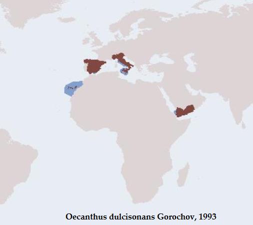 Distribuzione di Oecanthus dulcisonans